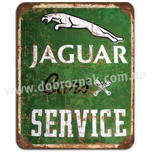 Jaguar service!