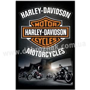 HARLEIY DAVIDSON motorcycles!