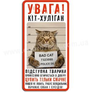 Кіт  хулиган!