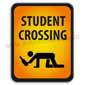 STUDENT CROSSING